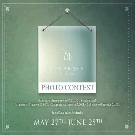 THE ANNEX photography contest