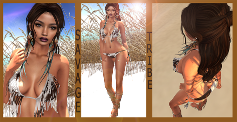 DEAD DOLLZ (BLOG)